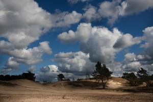 Zandverstuiving Hulshorst5
